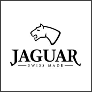link-jaguar