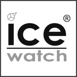 link-ice-watch-grey